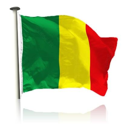 Le drapeau national du Mali. Crédit:com