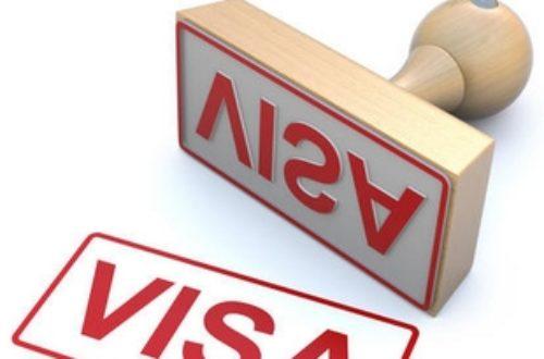 Article : Visa entre le Mali et le Cameroun, les non-dits